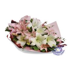 [호주/뉴질랜드]Lovely Lilies