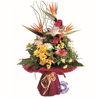 [스페인]극락조 꽃다발