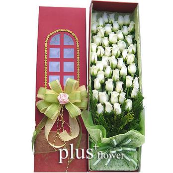 흰장미꽃박스