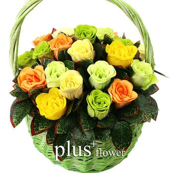 비누꽃-아름다운 사랑