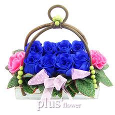 비누꽃-블루스윙